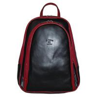 Рюкзак R0018.1 черно-красный 22x30x8 (Натуральная кожа)