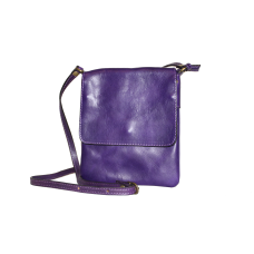 Сумка B0025.2 фиолетовый 17х20
